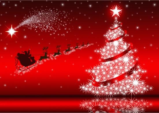 Frohe Weihnachten und ein gesundes neues Jahr 2015! | Essig Schneider