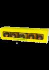 Senfspezialitäten Box ( 5 x 50ml )